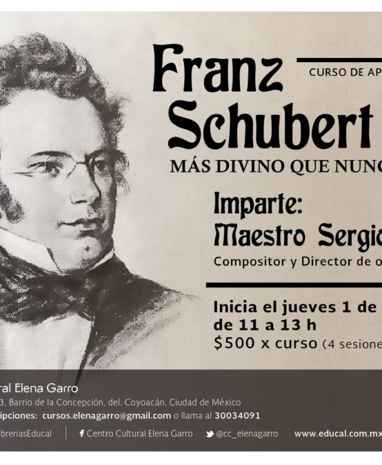 FRANZ SCHUBERT. MÁS DIVINO QUE NUNCA (MÓDULO II)
